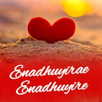 Nadhaswaram serial song enadhuyire mp3 free download by.