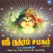 Rudram namakam chamakam for android apk download.
