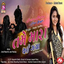 Tame Mara Thai Gaya by Hetal Sadhu - Download, Play MP3 Online Free