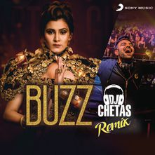 Buzz Dj Chetas Remix By Dj Chetas Download Play Mp3 Online Free