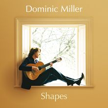Moonlight Sonata by Dominic Miller (Dominic Miller
