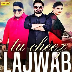 Tu Cheez Lajawab by Raju Punjabi - Download, Play MP3 Online